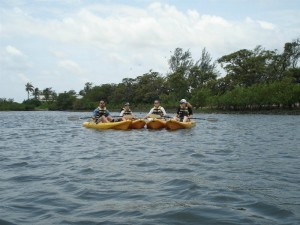 Ecological tours with Kayak Lake Worth
