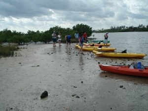 Kayak Lake Worth Eco-Tour