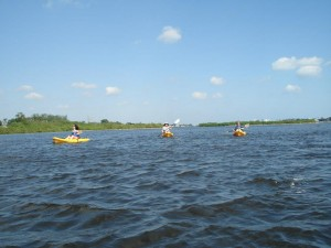 Kayak Lake Worth Private Eco-Tour