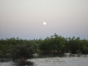 Full Moon by Kayak